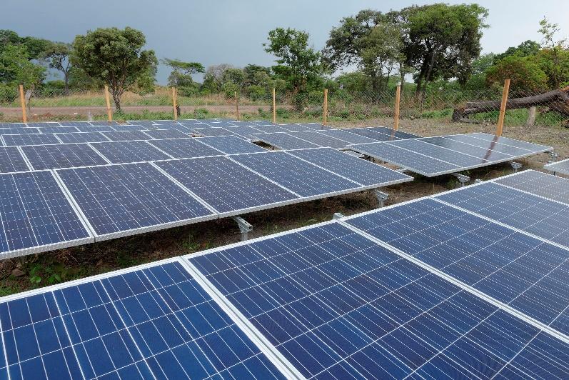 Competencias para la transición ecológica/acción climática